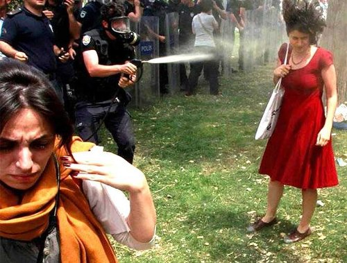 The Iconic Lady in Red Taksim Square Gezi Park 2013 Protests